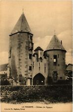CPA  La Fermeté -  Chateau de Cigogne   (518021)