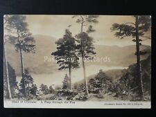 Cumbria HEAD OF ULLSWATER A Peep Through the Firs c1915 by Abraham 561