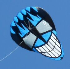 "Giant ""Cool Guy"" ripstop nylon kite w/ line-bag-winder. New from GKites.com."