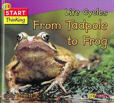 From Tadpole to Frog Life Cycles by Sally Hewett HC Science Gr K-2