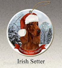 Pet Gifts Usa Irish Setter Christmas Ornament Santa Hat Define Naughty