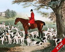 DOGS & RIDER AT REST FOX HUNT HORSE EQUESTRIAN HUNTING ART PAINTING CANVAS PRINT