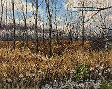 "Original Impasto Impressionist Painting ""Winter Marsh"" 16x20 Oil Painting"
