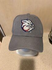 Lehigh Valley Ironpigs Phillies Gray Baseball Logo Cap, Unworn & Brand New!