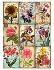 9 Flower Secret Garden PostCard Hang Tags Scrapbooking Paper Crafts (175)