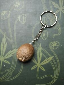 Real NUTMEG Keyring - Charm Against Backache - Pagan, Wicca, Magic, Healing