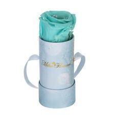 Mika Flowers - Preserved One Year Rose Box Single Rainbow Charitable Christmas