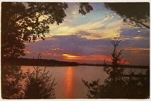 Melody of Color Kaufman Sunset Evening Postcard