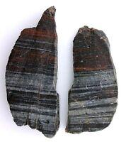 117.2 Gram Brown Black White Red Banded Arizona Jasper Agate Slab Cab Rough ABJ4