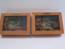 """KIWI - NEW ZEALAND"" AND ""TUATARA - NEW ZEALAND"" WOODEN SHADOW BOXES"