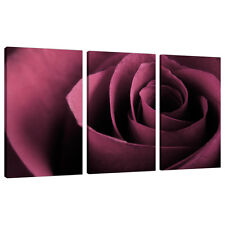 Set of 3 Plum Rose Wall Art Canvas Pictures Prints Bedroom Lounge 3111