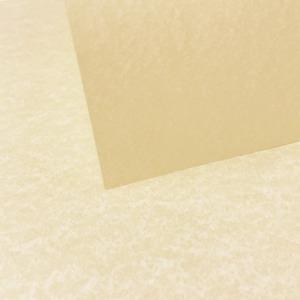 Natural Parchment Paper 175gsm - A4   10 sheets