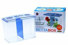 Betta Box  - Beta Siamese Fighting Fish Aquarium Hospital Rearing Display Case