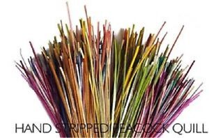Veniards Hand Stripped Peacock Quills (25 Polish Quills) * 2021 STOCKS *