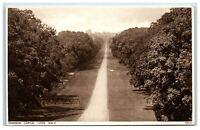Picture Postcard Windsor Castle Long Walk Berkshire