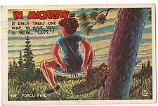 MICHIGAN COMIC POSTCARD It Only takes ONE PINE to give you a REAL LIFT Porcupine