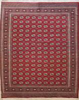 Rugstc 9x12  Bokhara Jaldar Red Area Rug,Genuine Hand-Knotted, Wool Pile