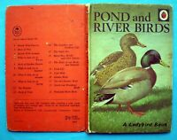 Pond And River Birds vintage Ladybird book nature ornithology estuary duck