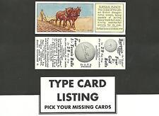 Type Cards: Typhoo HORSES EX cond.