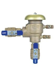 """Febco 765-1"""" BV-Pressure Vacuum Assembly"""