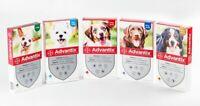 Bayer Advantix Spot on per cani 4 pipette - FREE SHIPPING