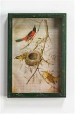 """Ragon House Collection Framed Oriole Window Box Shadow Box Picture 9"""" x 13"""""""