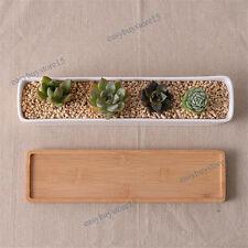 1X Long White Ceramic Succulent Planter Miniature Flower Pots + Display tray
