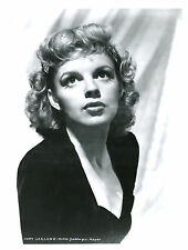 Judy Garland 8x10 photo C4446