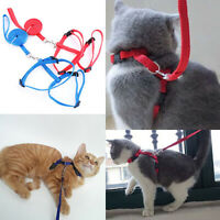 Universal Adjustable Dog Cat Pet Harness Safety Bright Color Rope Strap Puppy Ch