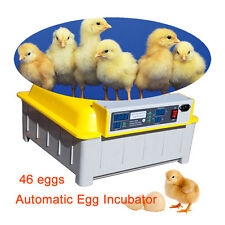 46 Digital Clear Egg Incubator Hatcher Temperature Control Automatic Egg Turning
