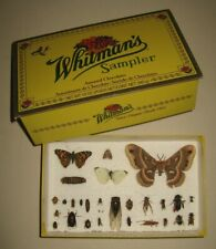 Real Insect Collection Student Display Entomology Prop Bugs Box Beetle Butterfly