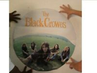 Black Crowes Poster Band Shot The Crows