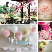 Wedding Party Tissue Paper Flower Pom Ball Hanging Garland Home Decoration