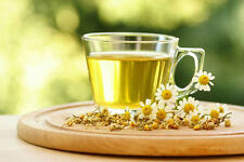 0.2g (appr. 4000) chamomile seeds MATRICARIA CHAMOMILLA valuable medicinal herb