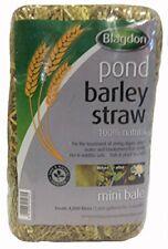Blagdon Mini Barley Straw Bale