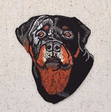 Puppy Dog Rottweiler Head - Rottie/Pets - Iron on Applique/Embroidered Patch