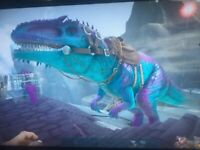 Ark Survival Evolved Xbox One PVE Cotton Candy 415 Melee Male Unleveled Clone