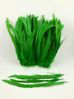 """50 GREEN DYED SOLID ROOSTER TAILS CRAFT MILLINERY FEATHERS 8""""-10""""L"""