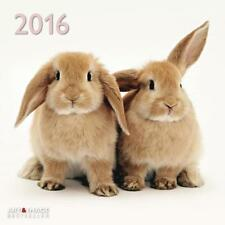 CALENDRIER 2016 -30x30 - LAPINS - BUNNIES