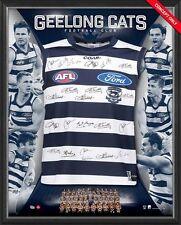2017 AFL OFFICIAL GEELONG CATS Team Signed Jumper Framed AFLPA + FREE GIFT