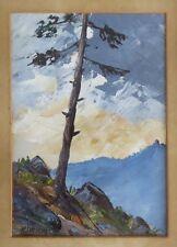 H Schwag Schwan Schwab ? Paysage de montagne au pin. Les Alpes ?