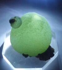 *** WOW-Lime Green Prehnite crystal Balls on Epidote, mine Mali***