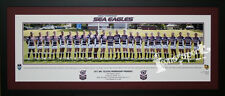 2011 Manly Sea Eagles Premiers Pano Framed