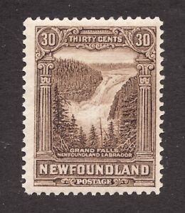#182 - Newfoundland - 30 Cent - 1931 - MH - F+ - Superfleas -