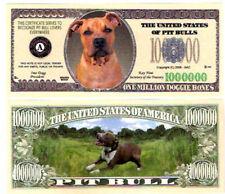 Dollarschein Pit Bull