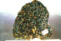 Sericho Pallasite Meteorite from Kenya Africa Habaswein 378.4g complete slice