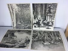 "Vtg Wisconsin Wildlife Conservation Department Photograph Black White 14"" x 11"""