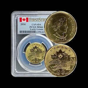 2016 Canada Dollar - PCGS MS66 - Top Pop 🥇 Rio Olympics Lucky Loonie