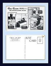 NEW JERSEY WAYNE FOX FARM ENTERTAINING BEARS MULTI VIEW POSTCARD CIRCA 1950