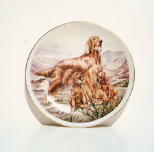 "Irish Setter Family Puppies 8"" Plate Green Edge Norfolk China Made in England"